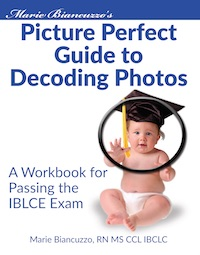 Picture Perfect Workbook